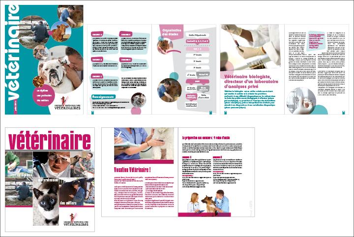 Brochure métiers Ordre national des vétérinaires - plusieurs éditions